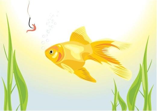goldfish vector 5