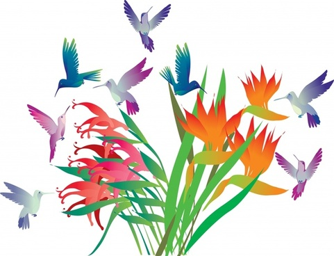 nature background flying birds flowers icons colorful design