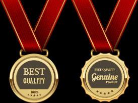 gorgeous medal award vector