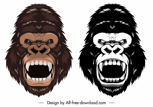gorilla head icons colored black white aggressive sketch