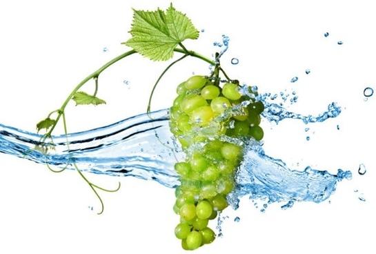 grape 03 hd