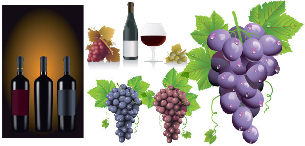 grape and wine vector graphic