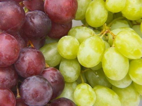 grape hd picture 3