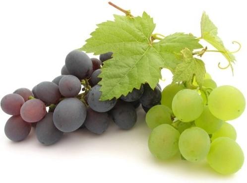 grape hd picture 9