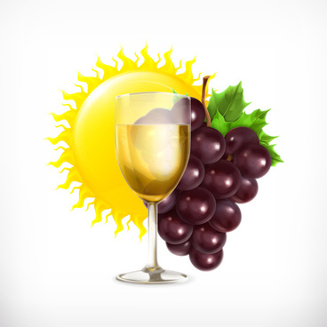 grapes and drinks with sun vector