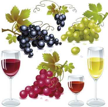 grapes and grape wine elements vector
