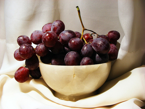 grapes of patience
