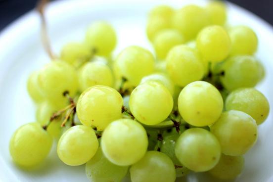 grapes weintrauben