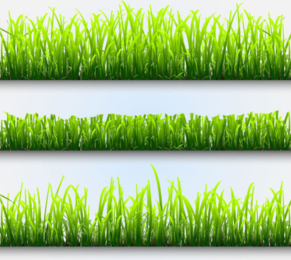 grass and flowers decoration elements vector
