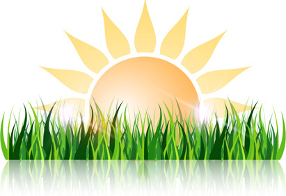 grass and sun vector background