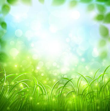 grass sunshine blurred background vector