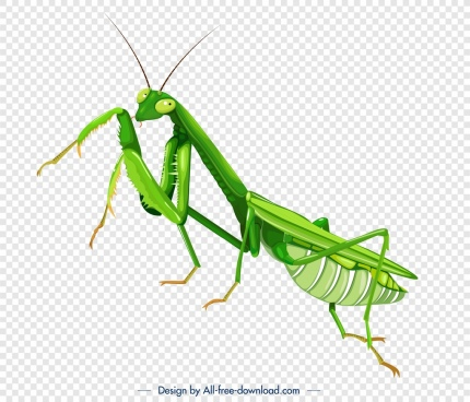 grasshopper insect icon green 3d closeup sketch
