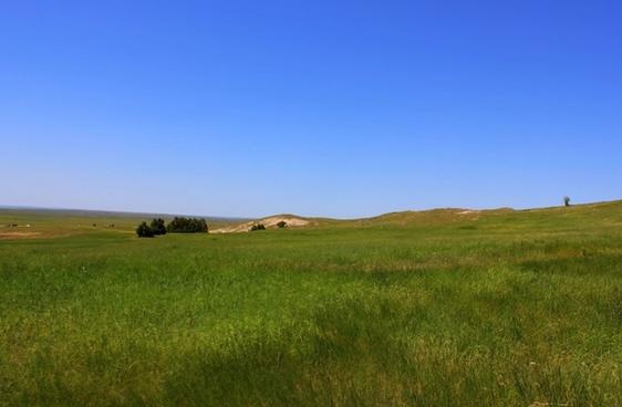 grassland landscape at badlands national park south dakota