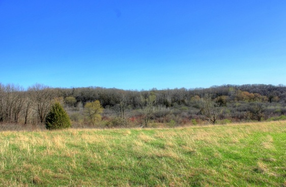 grasslands and forests at kettle moraine south wisconsin