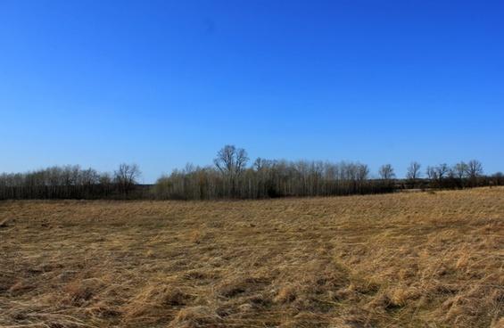 grasslands landscape at kettle moraine south wisconsin