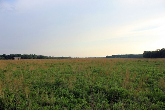 grassy prairie at prophetstown state park indiana