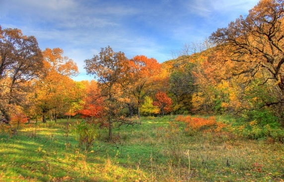 great colorful autumn landscape at perrot state park wisconsin