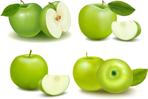 green apple with slice vectors