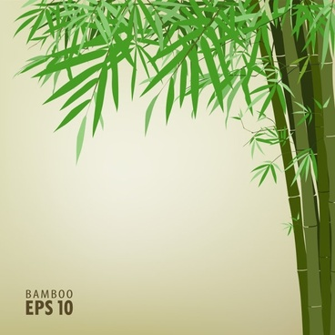 green bamboo background text template vector 2