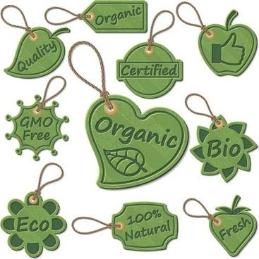 green eco tags vector design