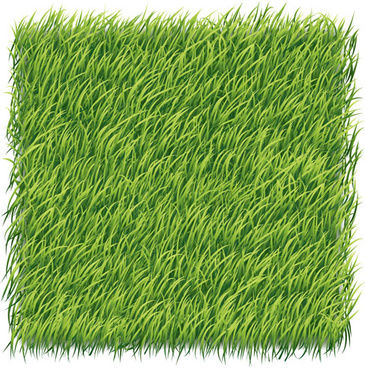 green grass art backgrounds vector
