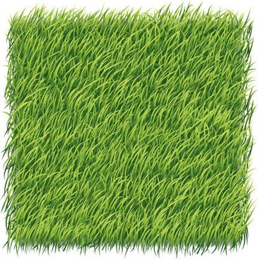green grass art backgrounds vector