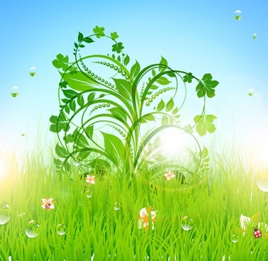 spring background sparkling fresh floral leaves meadow decor
