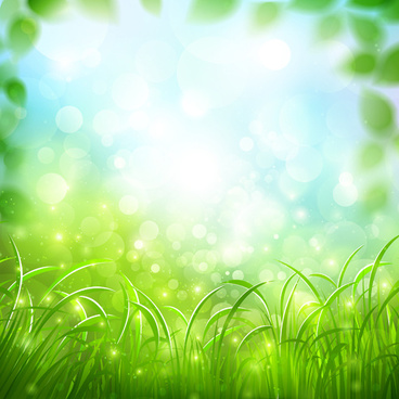 green grass with halation background vector