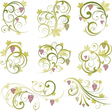 decorative elements templates grapes fruits curves sketch