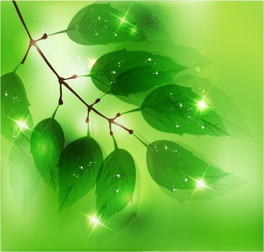 leaves branch background modern sparkling green decor