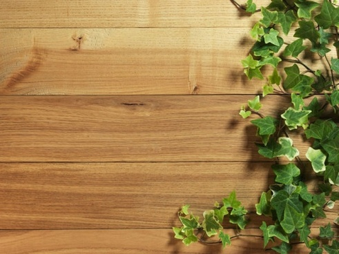green leafy wood background hd picture