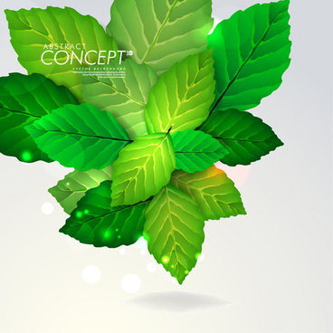 green leaves design elements cards vector