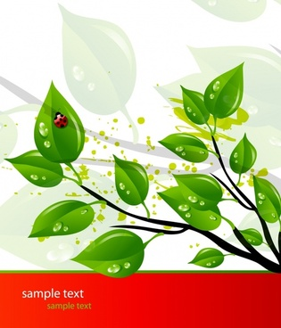ecology background wet green leaves ornament