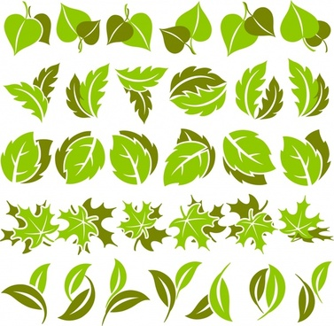 leaves icons collection green shapes sketch