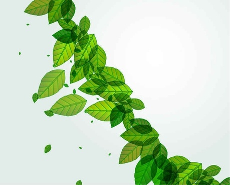 Green Leaves Vector Background