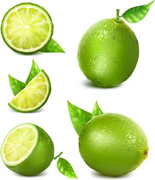 green lemon vector