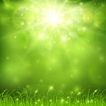 green nature and sunlight background vector