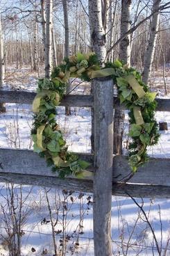 green pointsetta wreath
