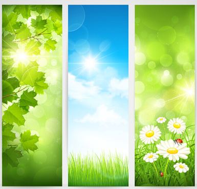 green spring leaves banners set vector