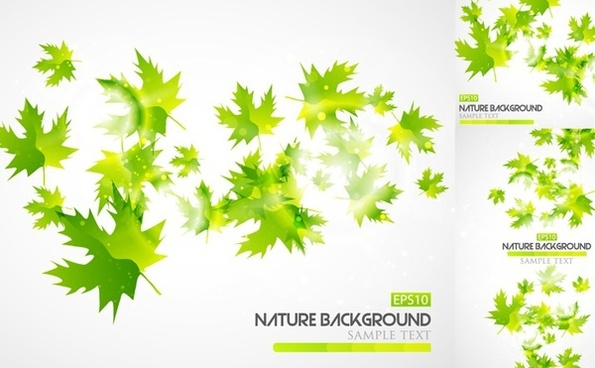 nature background sets green leaves decoration