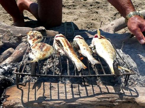 grill fish fishing