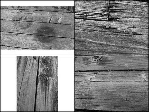 grunge wood texture brush