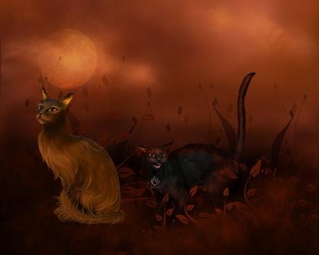 halloween cat psd