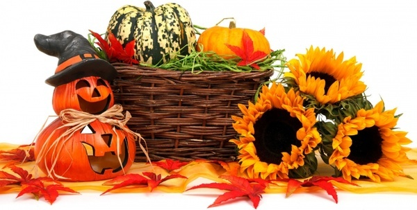 halloween harvest decoration