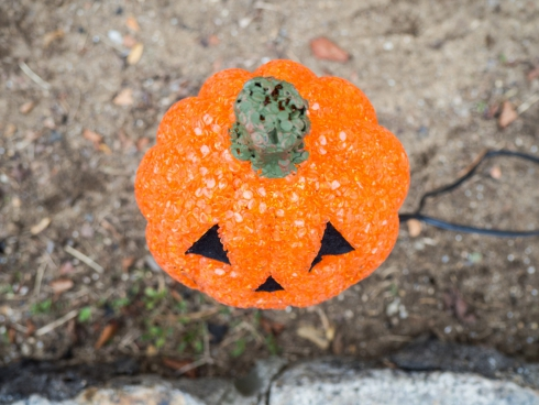 halloween jack o lantern light