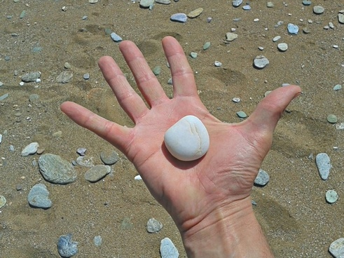 hand beach palm