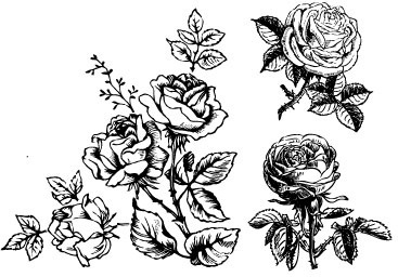 Hand Drawing Flowers Free Vector Download 102 552 Free Vector For