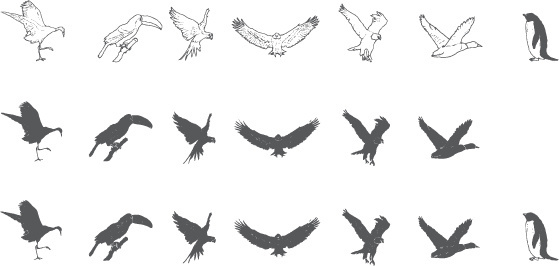 hand drawn birds sketch vectors
