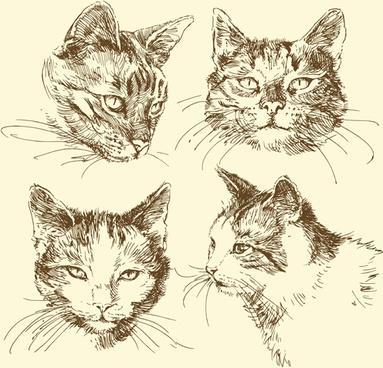 hand drawn cat head vector