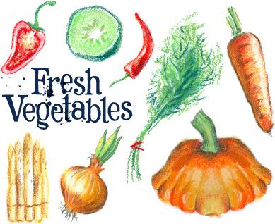 hand drawn fresh vegetables colored vector